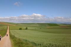 paysage de rioja